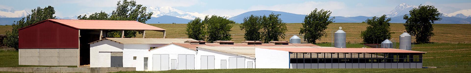 Vista de nuestro cebacero en Vencillón (Huesca)