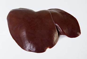 Hígado de cordero